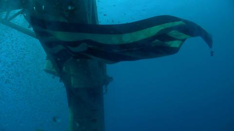 The USS Hoyt Vandenberg in Key West, from underwat Stock Video Footage