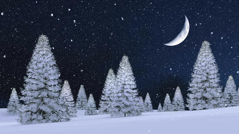 Snowy fir forest at snowfall winter night with big half moon Animation