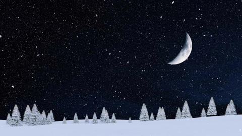 Snowy winter fir forest at snowfall night with big half moon in sky Animation