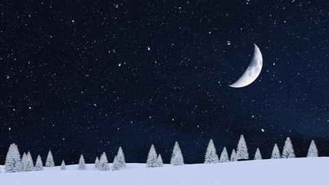 Snowy firs at snowfall winter night with big half moon in sky Animation