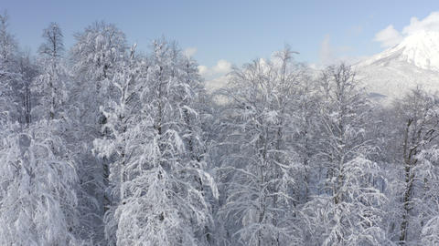 Amazing view from drone on winter city in mountain valley Live Action