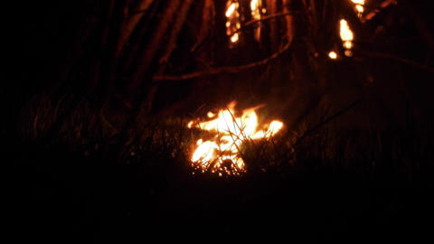 From the night fire lit up dry grass Live Action
