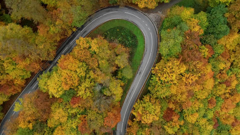 Aerial view of country road through autumnal forest Live Action