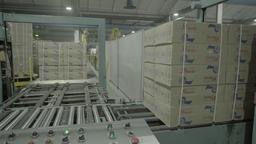 Conveyor belt in factory work Live Action
