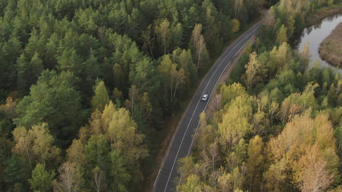 A white car is moving along the highway through the forest, near the river flows.Aerial photography Live Action
