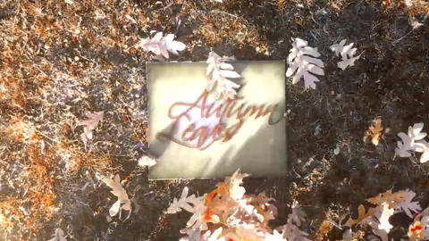 Autumn Leaves Logo Reveal After Effects Template