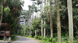 Taipei Botanical Gardens Taipei Taiwan 4 Footage
