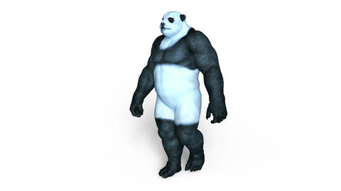 Monster Panda Walk Animation