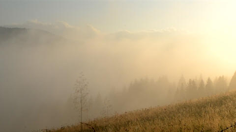 Morning fog dissipates in the mountains Carpathians. Morning fog moves Live Action