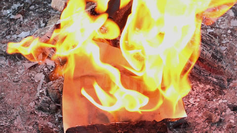 Word Panic on a white sheet of paper burns into a fire against. Slow motion Live Action