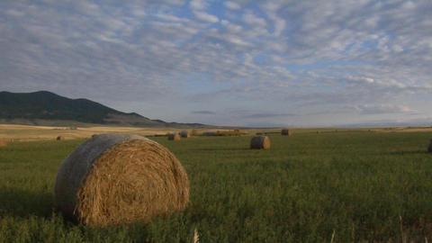 Bales of hay sit in green fields on a prairie farm Stock Video Footage