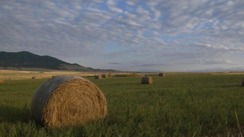 Bales of hay sit in green fields on a prairie farm Footage
