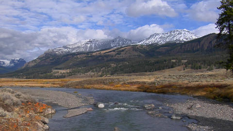 A small stream flows in Yellowstone National Park, Wyoming Stock Video Footage