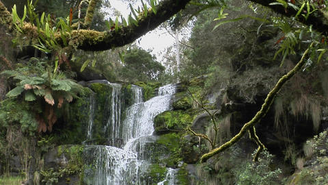 A waterfall flows through a lush tropical rain forest Footage