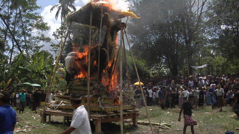 A large statue of a Brahma bull catches fire and burns in a Balinese cremation ceremony Footage