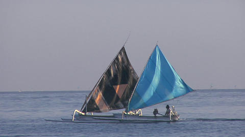 colorful catamarans race along the shore Stock Video Footage