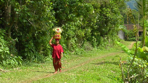 A woman carries a basket of fruit on her head while walking down a lush path Footage