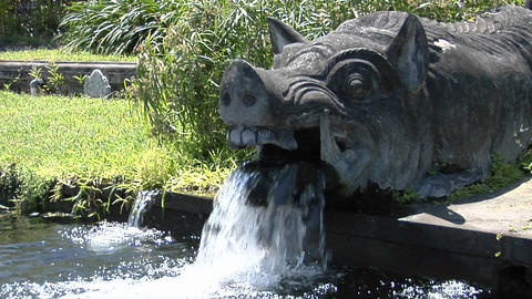 Water pours from the mouth of a boar statue at a water... Stock Video Footage