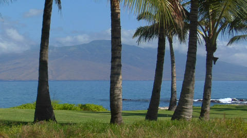 A beautiful island shot with palms and distant peaks in... Stock Video Footage