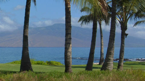 A beautiful island shot with palms and distant peaks in Hawaii Footage