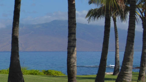 A pan across palm trees and a beautiful bay in Hawaii Stock Video Footage