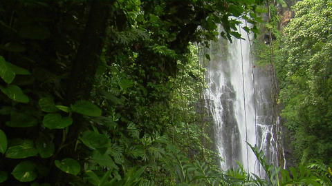 A tropical waterfall flows through a dense rainforest in... Stock Video Footage