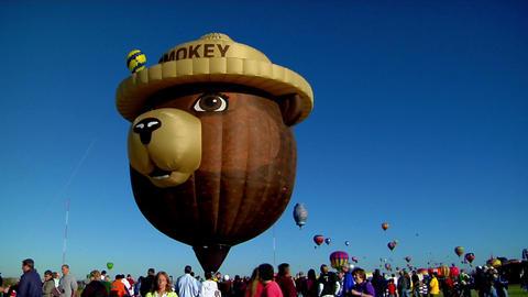 A Smokey The Bear balloon at the Albuquerque Balloon... Stock Video Footage
