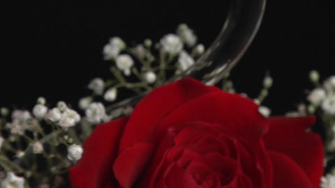 A red rose in a swan shaped vase surrounded with babies... Stock Video Footage