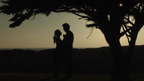 A couple slow dances under a tree Stock Video Footage