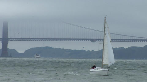 A sailboat coasts near the Golden Gate Bridge on a windy day Stock Video Footage