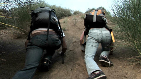 A woman and man wearing backpacks struggle to climb up a... Stock Video Footage