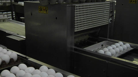 Automated machinery closes carton lids on eggs in a factory Stock Video Footage