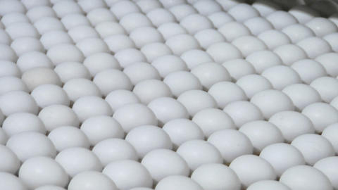 White eggs move along a factory conveyor belt Stock Video Footage