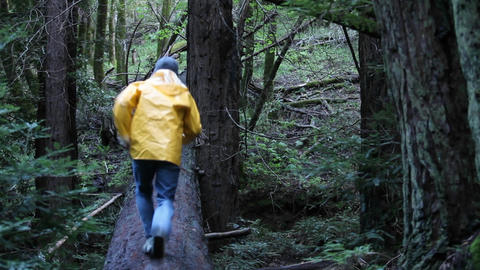 A man runs along a log in the woods, jumps off and rolls over Footage