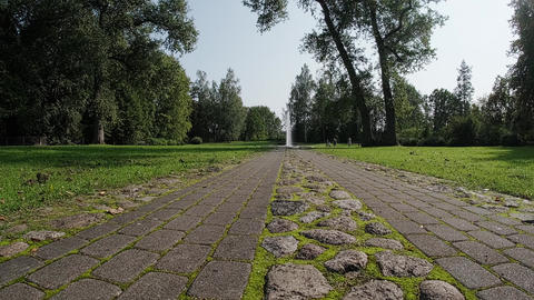Perspective of country cobblestone road. Grass and moss sprout between the road stones Live Action
