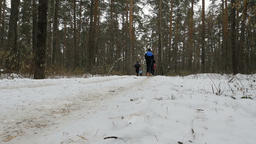 large group of runners athletes running snowy forest Footage