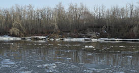 River bank with ice flowing Footage