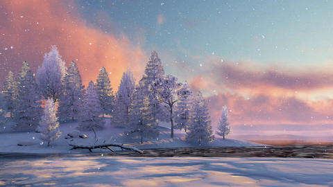 Snowy winter fir forest and frozen lake at sunset or sunrise Footage