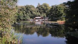 Lankower lake landing stage, idyllic sceneries Footage