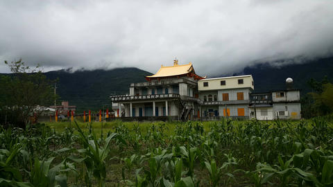 Temple with banana trees in foreground Footage