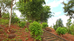 Forestry Hill with Long Stone Stairs in Buddhist Temple Complex Live Action