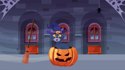 Happy halloween animated scene with 4k animation 24 Live Action