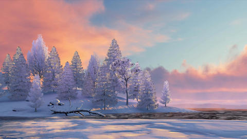 Winter fir forest and frozen river at sunset or sunrise Animation