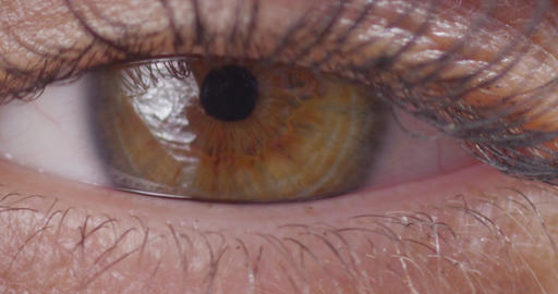 Eye Opening Blinking Macro Close Up Slow Motion 200fps 4K Footage