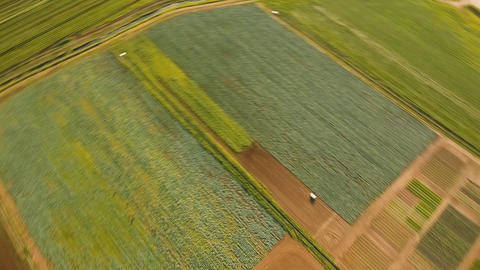 Aerial view of farmland Live Action
