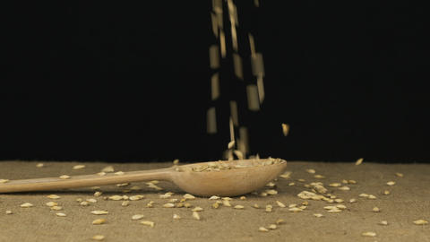 Grain barley starts falling into the wooden spoon and fills it. Slow motion Live Action