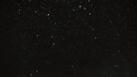 Winter Snowfall Black Background Footage