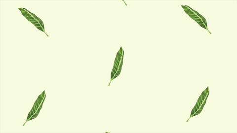 Tropical exotics leafs ecology animation pattern background 4k 7 Live Action