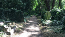 Highgate Cemetery London UK 3 Footage