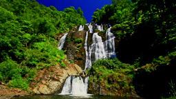 Foamy Mountain Waterfall Cascade in Tropical Park Footage